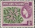 Pitcairn 1957 01.jpg