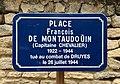 Place François de Montaudouin (Druyes-les-Belles-Fontaines) juin 2019 (panneau de rue).jpg