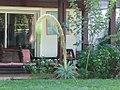 Plante succulente (3670384083).jpg