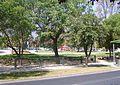 Plaza Ossandon.JPG