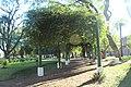 Plaza central Concepción del Uruguay, Entre Ríos. 10.jpg