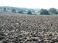 Ploughed fields - geograph.org.uk - 534981.jpg