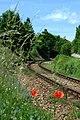 Poříčí nad Sázavou, železniční trať.jpg