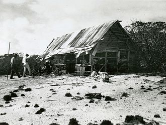 Wake Island - Members of the Tanager Expedition explore an abandoned feather poaching camp on Peale Island.
