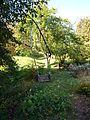 Poltava Botanical garden (58).jpg