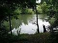 Pond, Nuthall - geograph.org.uk - 887118.jpg