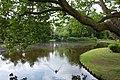 Pond in Park - Gouda, Holland - panoramio.jpg