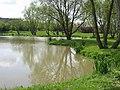 Pond on Keswick Beck - geograph.org.uk - 8960.jpg