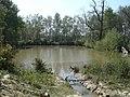 Pond on Turf Plain - geograph.org.uk - 406541.jpg