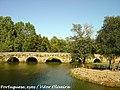 Ponte do Cabeço do Vouga - Portugal (7942635450).jpg