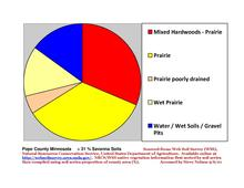 Pope Co Pie Chart New Wiki Version.pdf