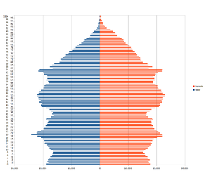 Demography of Wales - Population pyramid for Wales as at the 2011 census.