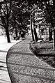 Promenade Du Lac (219110545).jpeg