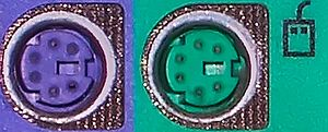 Mini-DIN connector - The color-coded PS/2 connection ports (purple for keyboards and green for mice) on the rear of a personal computer.