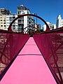 Puente peatonal pintado de color rosa chicle sobre la calle Parral, Buenos Aires.jpg