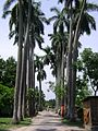 Puthia Rajbari07.JPG