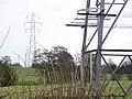 Pylons - geograph.org.uk - 124801.jpg