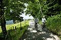 Radfahrer Allgäu.jpg