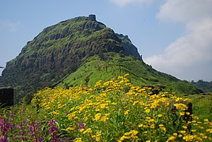 Rajgad after monsoon.jpg