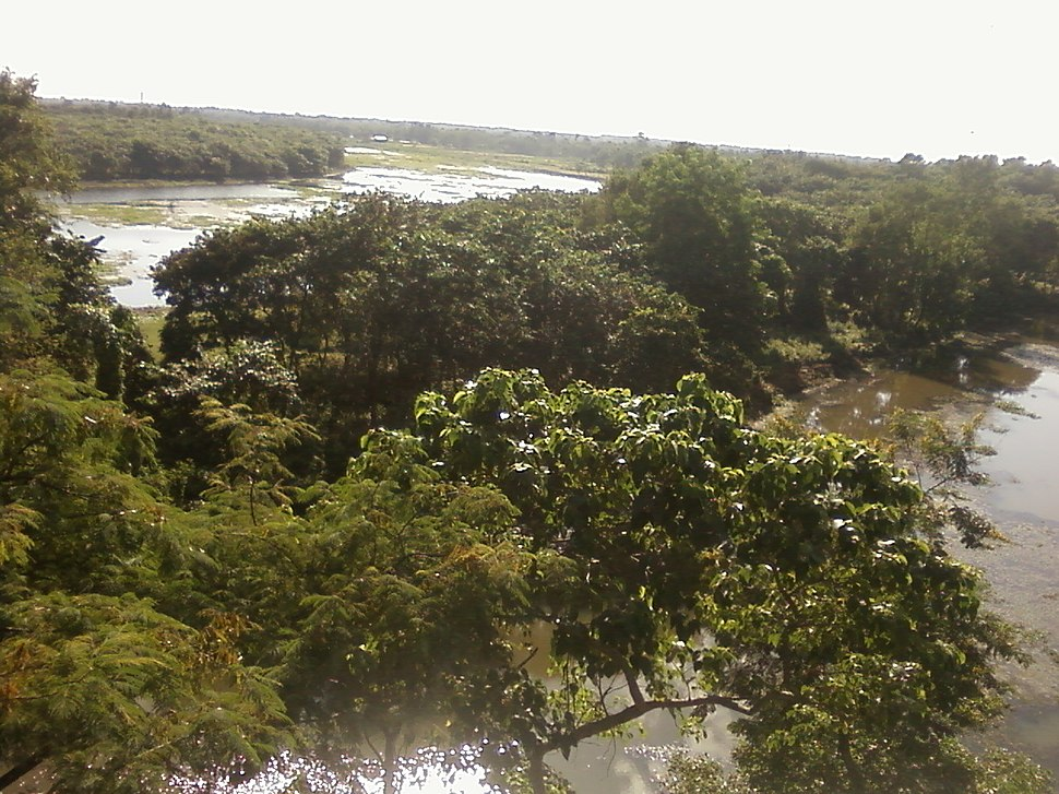 Rasikbil bird Sanctuary in Cooch Behar District 3