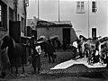 Ratsupoliisin hevosia poliisilaitoksen pihalla, Sofiankatu 3 - N103221 - hkm.HKMS000005-km00247v.jpg