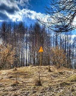 Red Forest area surrounding the Chernobyl Nuclear Power Plant