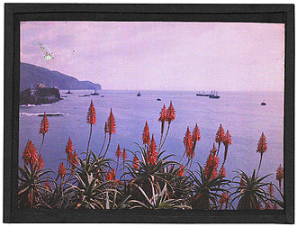 Sarah Angelina Acland - Funchal Bay, Madeira, by Sarah Angelina Acland, c.1910.