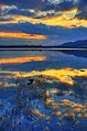 Reflections - Lake of Menteith - panoramio.jpg