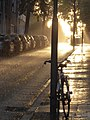 Regenschauer.jpg