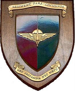 Nos cousins : Les Paras Commandos Belges  263px-RegtIX