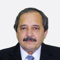Ricardo Luis Alfonsín.png