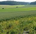Richtung Poxdorf - panoramio.jpg