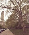 Riverside Church and Grant's Tomb May 6 2019.jpg