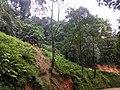 Roadside Landslip Anaimalali Hills IMG 20180822 164933119 BURST001.jpg