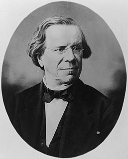 Robert McClelland (American politician) American politician