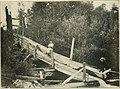 Rod and gun (1898) (14750317966).jpg
