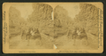 Room for one more, Williams Canyon, Colorado, U.S.A, from Robert N. Dennis collection of stereoscopic views 3.png