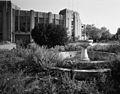 Roosevelt Stadium abandoned 8.jpg