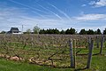 Rossignol Estate Winery, Little Sands, Prince Edward Island.jpg