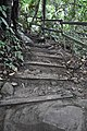 Rough uphill trail (11967805506).jpg