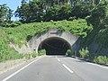 Route114 Watari Tunnel 1.jpg