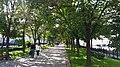 Rozhdestvenskii Boulevard - August 2015.jpg