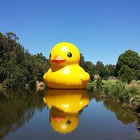 Rubber Duck in Parramatta Park.jpg