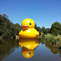 Rubber Duck in Parramatta Park.jpg