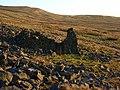 Ruin, Ousbydale - geograph.org.uk - 621997.jpg