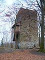 Ruine alt Wülflingen.JPG