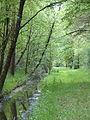 Ruisseau Roule-Crottes 2.JPG