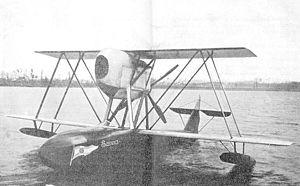 SIAI S.21.jpg