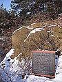 Saalburg 2012-02-05 7516 Steinerne Rose.jpg
