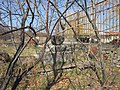 Saint Gevork Monastery of Mughni 051.jpg